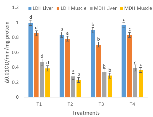 Effect of dietary supplementation of ethanolic extract of Mucuna pruriens on Lactate dehydrogenase (LDH), Malate dehydrogenase (MDH) in Labeo rohita.